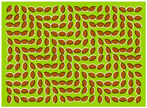 illusione ottica ondulatoria