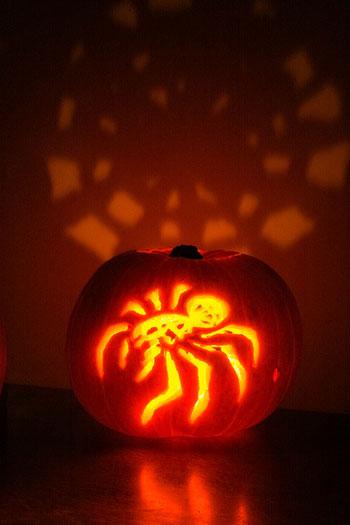 Halloween-paura-dei-ragni