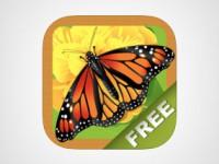 Migliori-app-antiansia-14