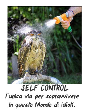 Autocontrollo significato