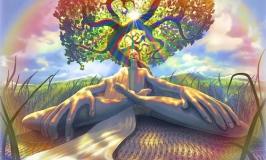 Meditazione Per Principianti: 20 Consigli pratici per la comprensione della Mente