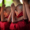 Meditazione benefici